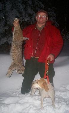 Snow, Dog, Bobcat
